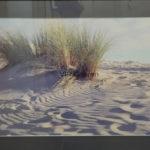 Little Sahara Kangaroo Island 35 mm SLR 1 copy of 1 L 92 cm x W 61.5 cm